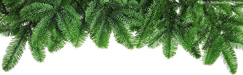 Tannenzweige gehören ebenso zu Weihnachten wie ein Weihnachtsbaum. - www.christbaumspitzen.net